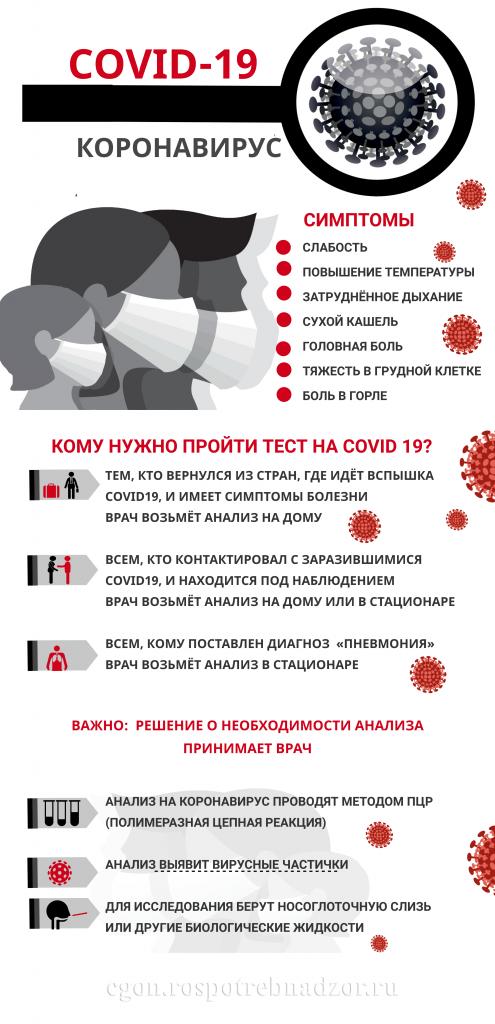 вирус1 (1)